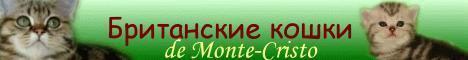 Cattery de Monte-Cristo